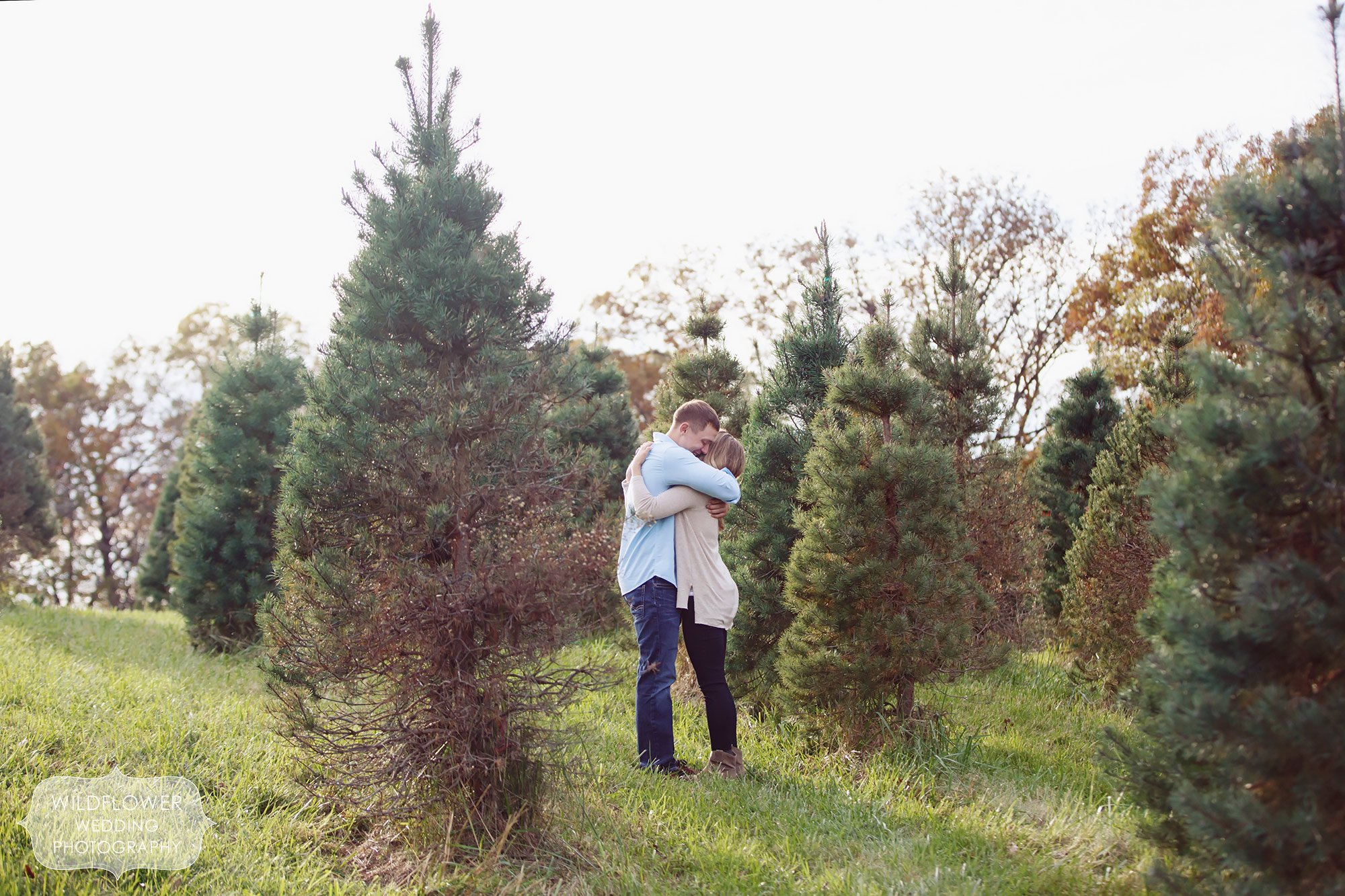 Couple hugging in the middle of the Christmas Tree Farm, Timberview, in Hartsburg, MO.