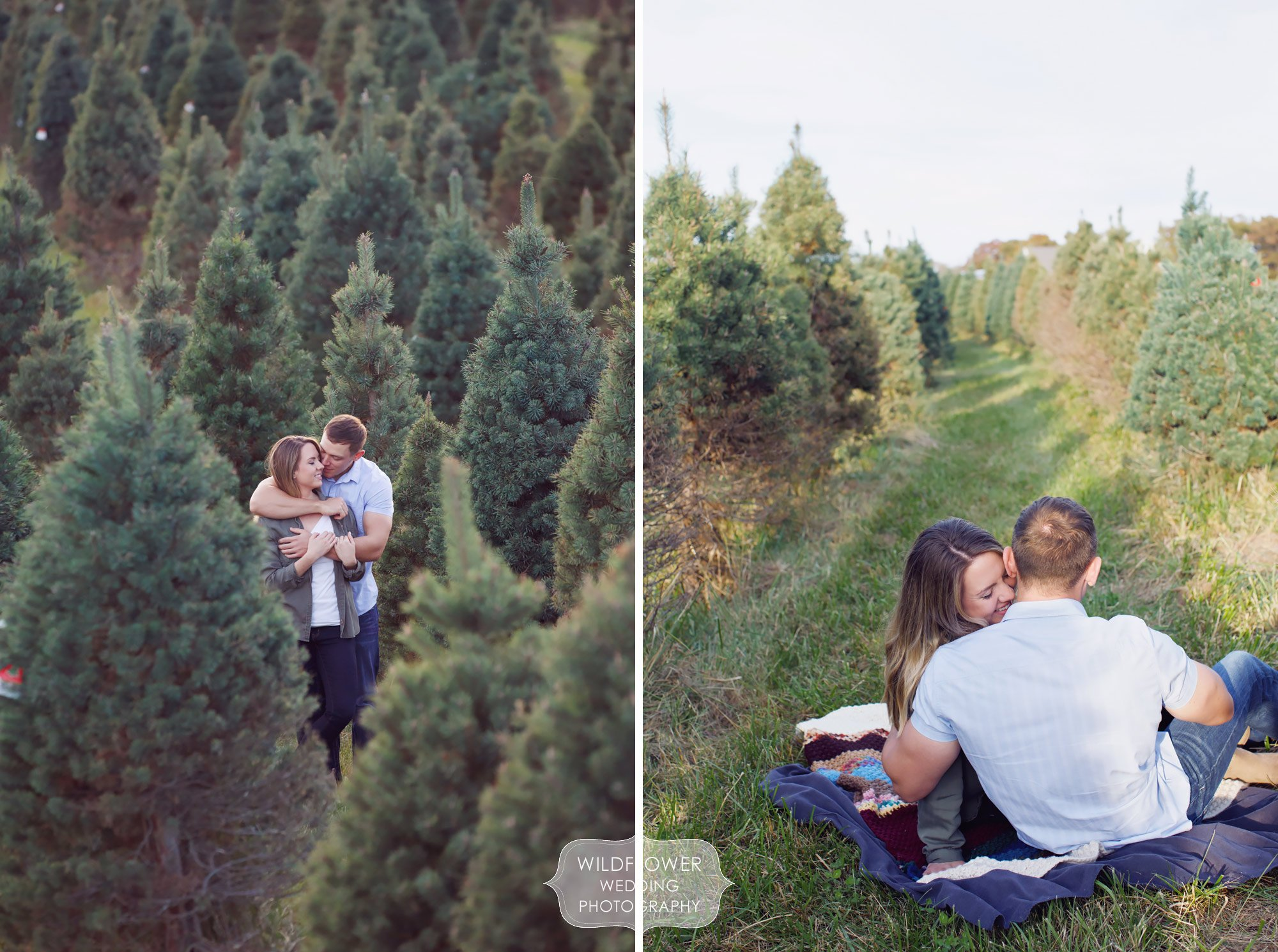 Rustic engagement photography session at the Timberview Tree Farm in Columbia, MO.