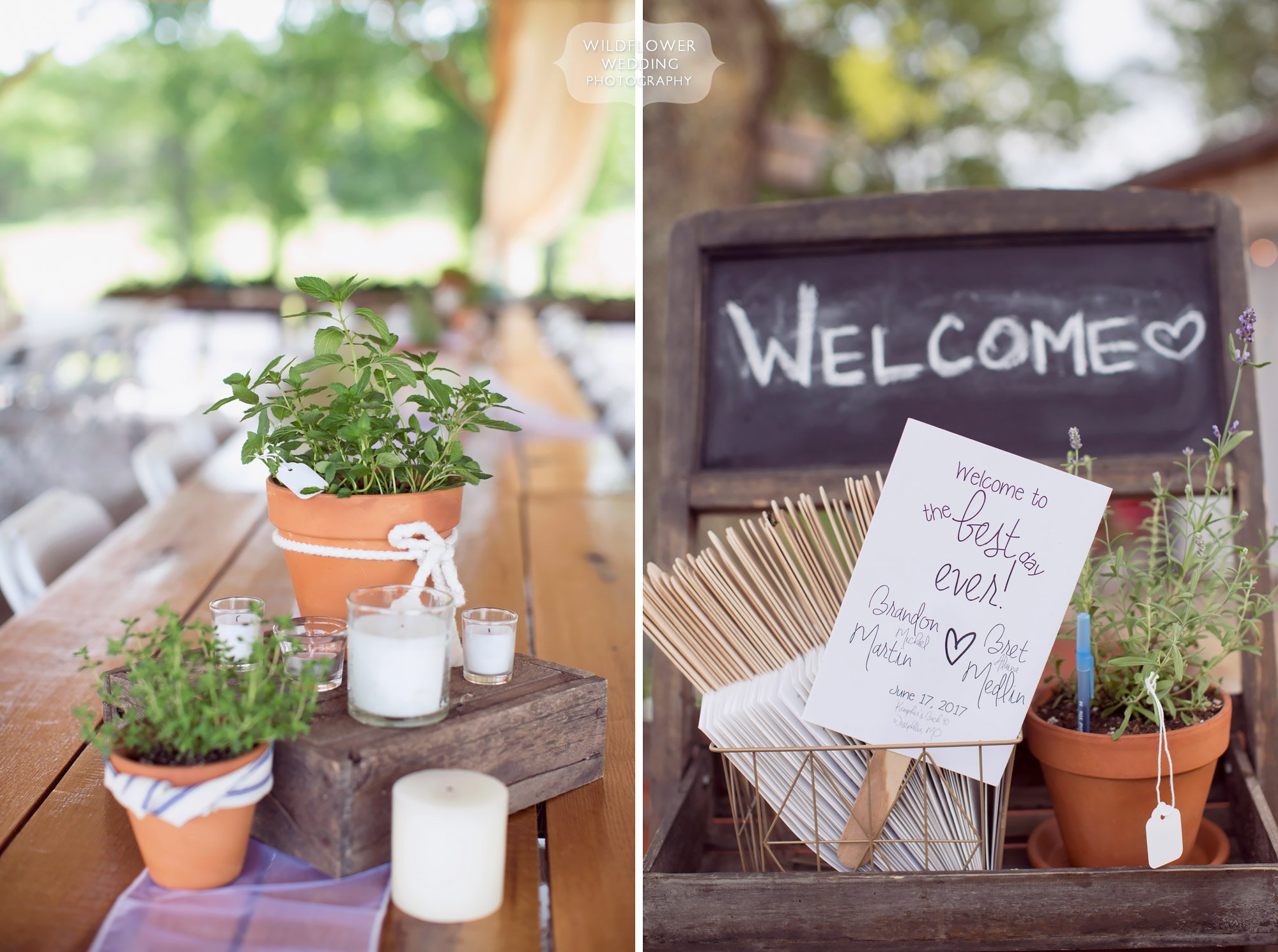 Live potted plants as centerpieces at this barn wedding in the country at Kempker's Back 40.