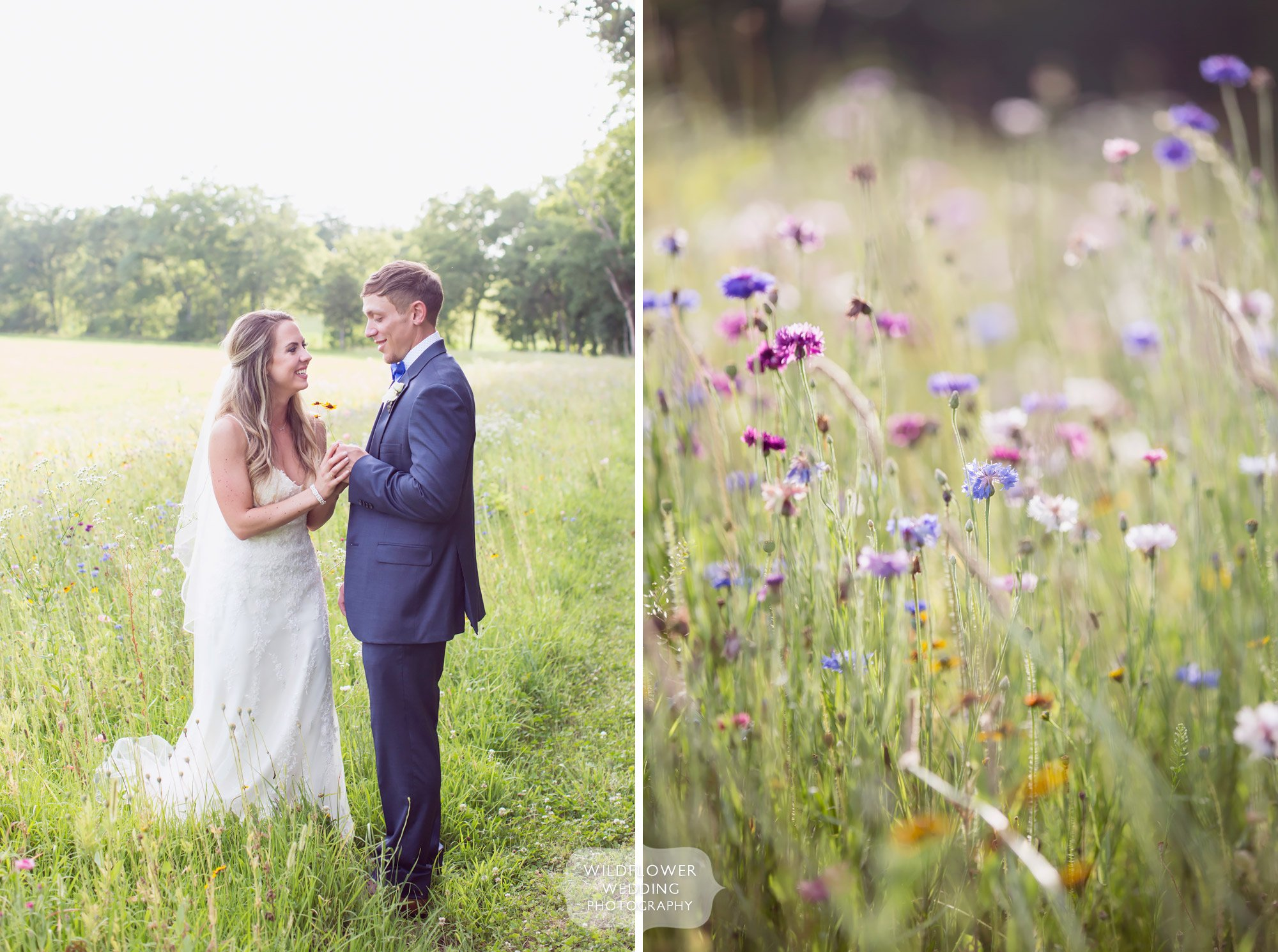 Loved these photos of the bride and groom standing in a field of wildflowers behind the barn at Kempker's in Westphalia.