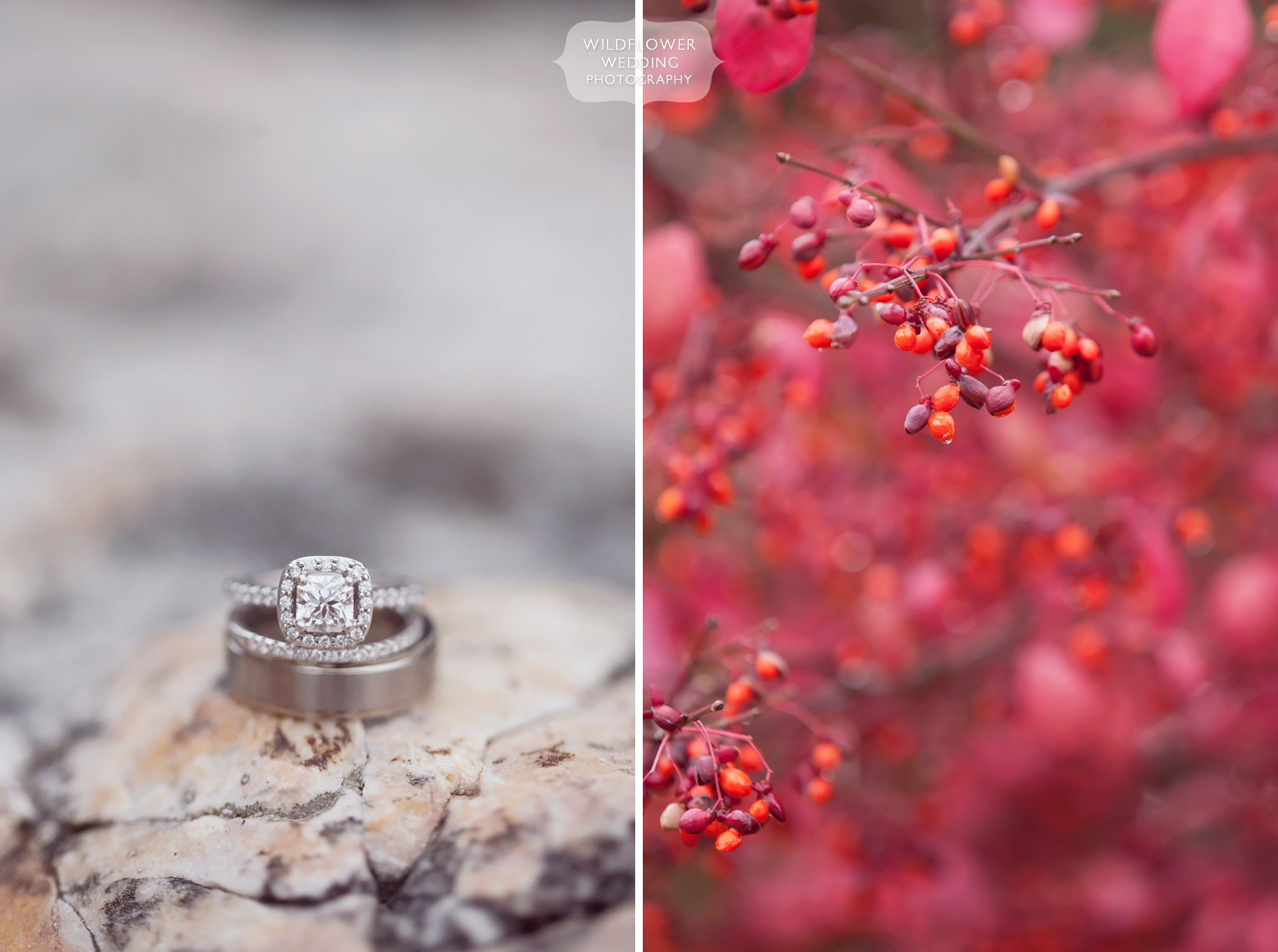 Artistic wedding photo of the rings on granite on the Blue Bell Farm in Fayette, MO.
