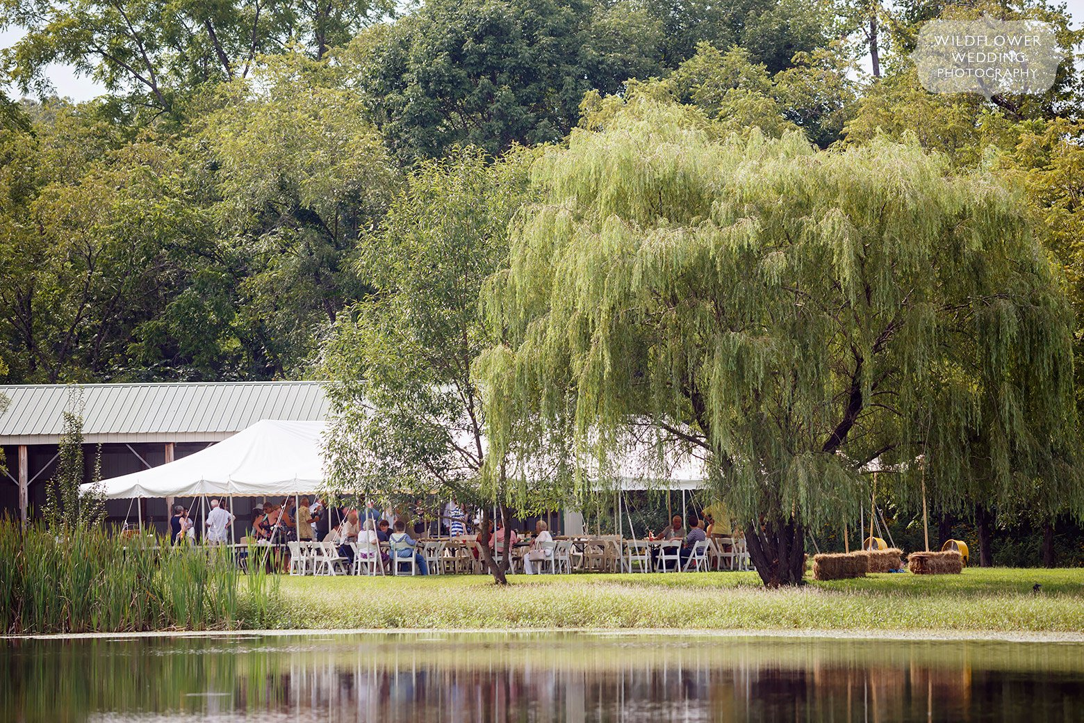 Backyard wedding on a pond in St. James, MO.