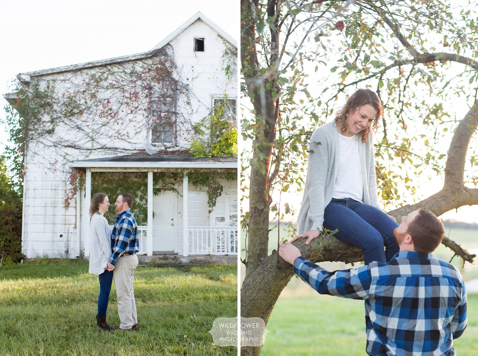 The couple climbed trees during this mid-MO country engagement photo session in Boonville.