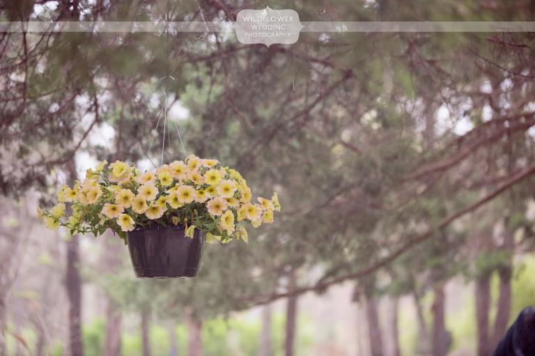 rustic wedding photography alpine park mo 02