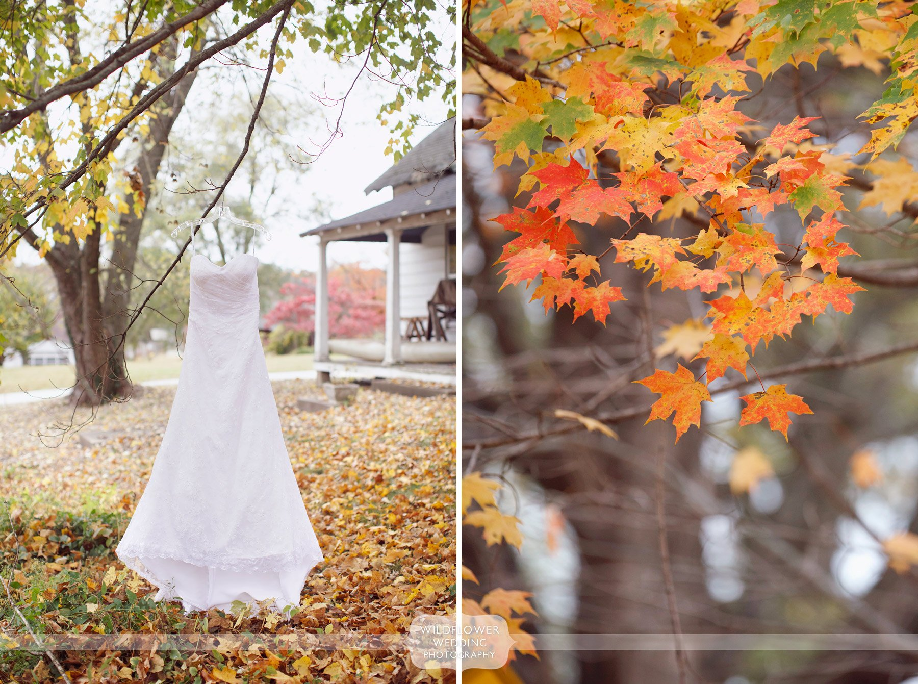 bride's wedding dress hangs from tree in october for rocheport wedding