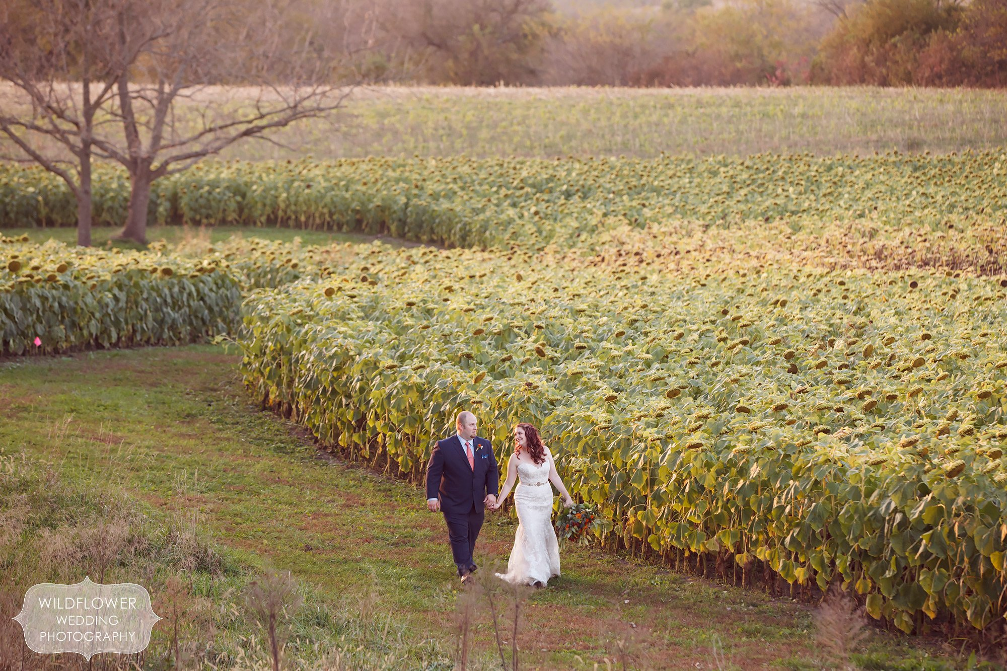 Schwinn Produce Farm Fall Wedding In Leavonworth KS In October
