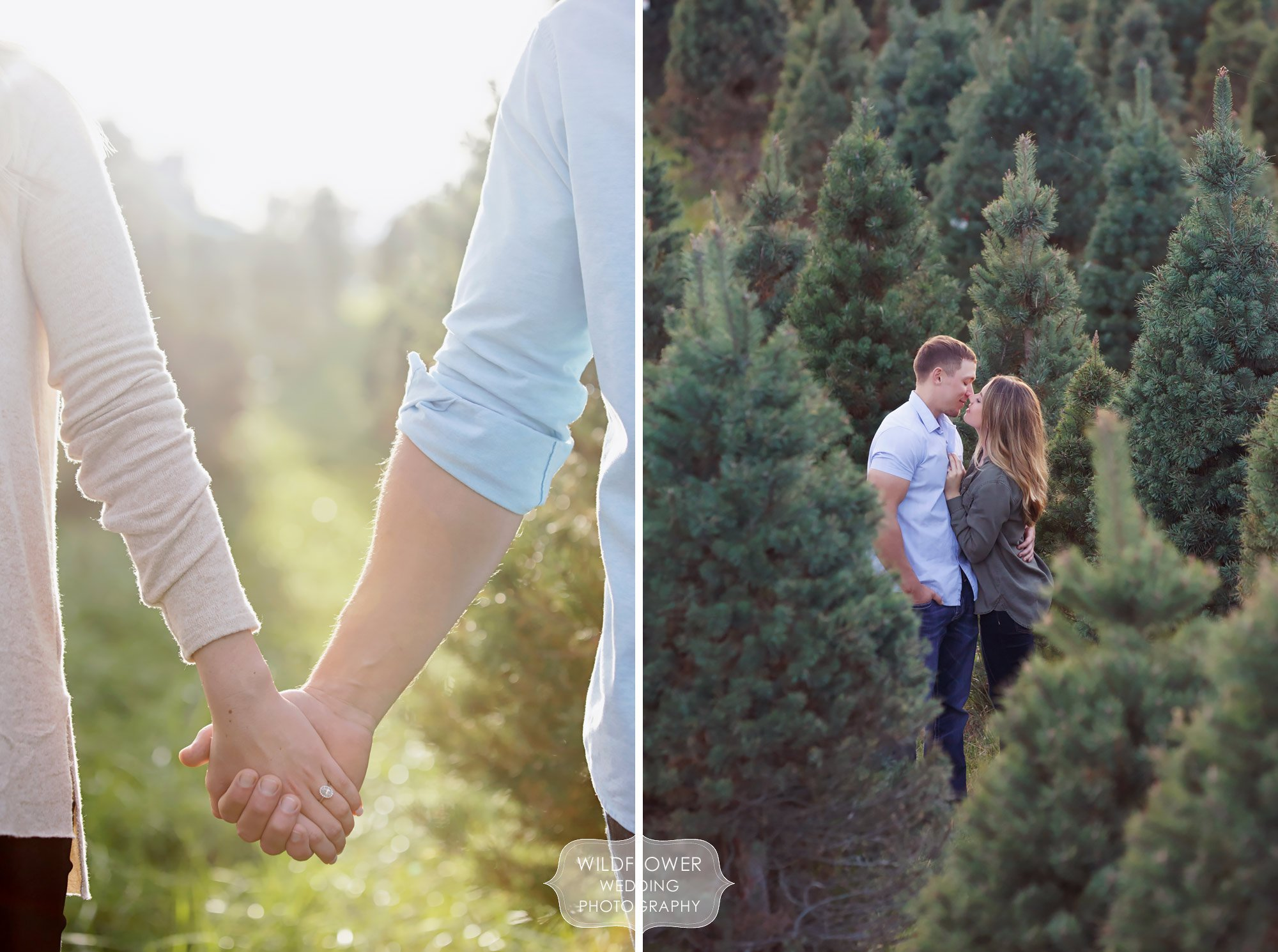 Couple holding hands among trees at the Timberview Christmas Tree Farm engagement session in MO.