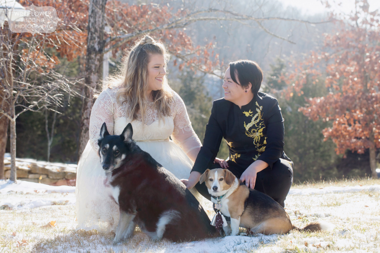 Queer couple poses with their dogs before their same sex wedding ceremony and reception.