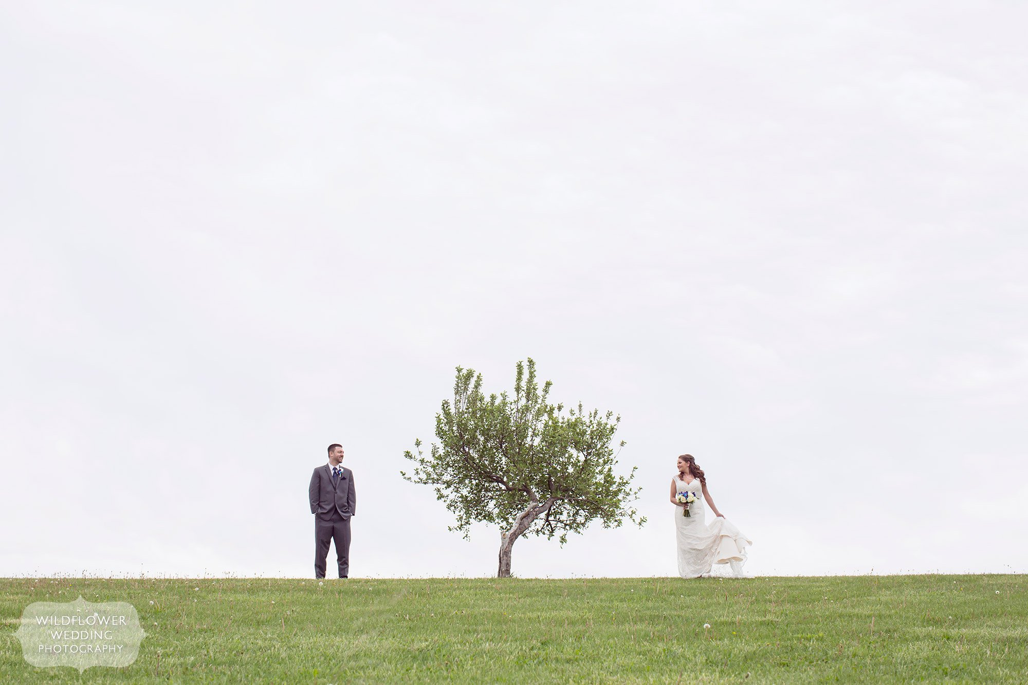 Artistic wedding photo of the bride and groom at this KC farm wedding on a hill with a single tree between them at the Weston Red Barn.