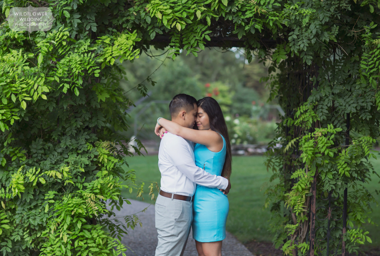 Shelter Gardens engagement photography with couple under an arbor of wisteria in Columbia, MO.