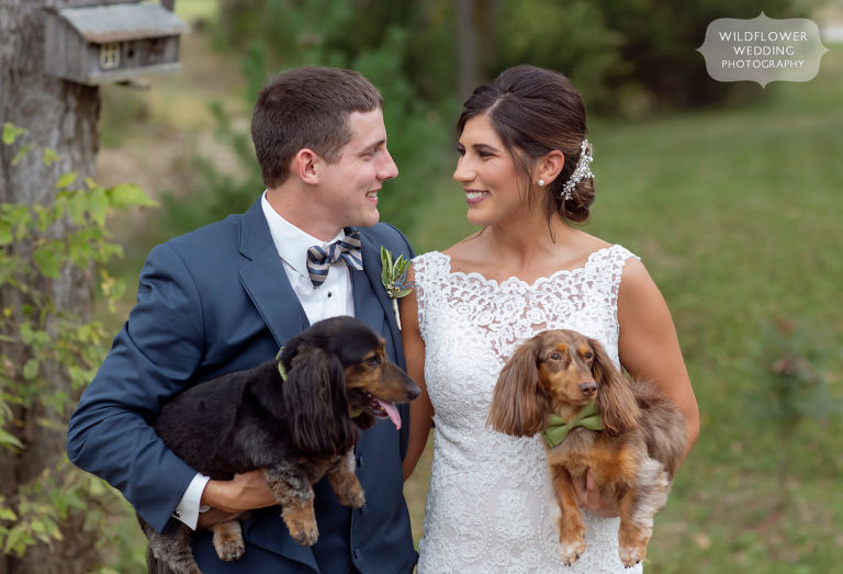 Bride and groom hold their dachshunds at this Jefferson City wedding.